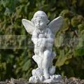 Anděl AN15