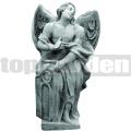 Anděl AN20