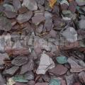 Břidlicová štěpka fialová 30-60mm