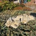 Čínský drak 073b