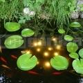 Jezírkové osvětlení Welkin pond light