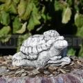Želva s mládětem ba 247