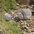 Želva z kamene 25 cm
