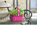 Košík Landhaus - květináč Emsa 517698