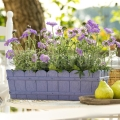 Květináč Country 75 cm pastelová fialová 515253