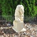 Lev levý 052a