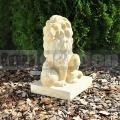Lev s koulí 099b