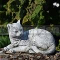 Kočka ležící ba 157