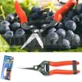 Zahradní nůžky vinařské 19cm 345