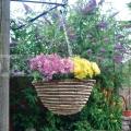 Závěsný proutěný květináč světlý HB12RR