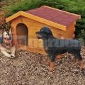 Búda pre psa Stredná Luxus