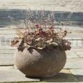 Virágcserép Celbridge 57 Old Stone Brown