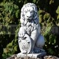 Lev pravý ba 89