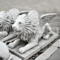 Lev s krídlami A67