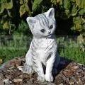 Mačka ba 83