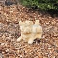 Kutya szobor Yorksihre 275b