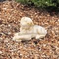 Rottweiler kutya szobor 275c
