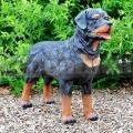 Rottweiler kutya szobor A47