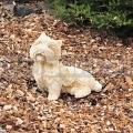 Kutya szobor 275a