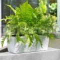 Virágláda 50 cm fehér Casa Mesh Emsa 515021