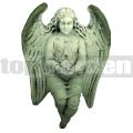 Anjel AN05