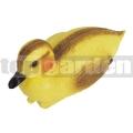 Jazierková kačička Oase 36863