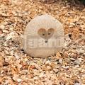 Ježko z kameňa 20 cm