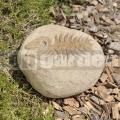 Kamenný reliéf ryba