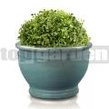 Kvetináč glazovaný TOP011 tyrkysová