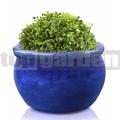 Kvetináč glazovaný TOP012 modrá