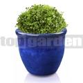 Kvetináč glazovaný TOP013 modrá