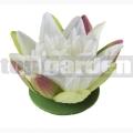 Lekno biele 13cm Lotus 123568