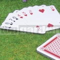 Obrie karty GA013