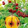 Plašič vtákov - balón art 45108