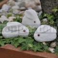Zajačik z kameňa
